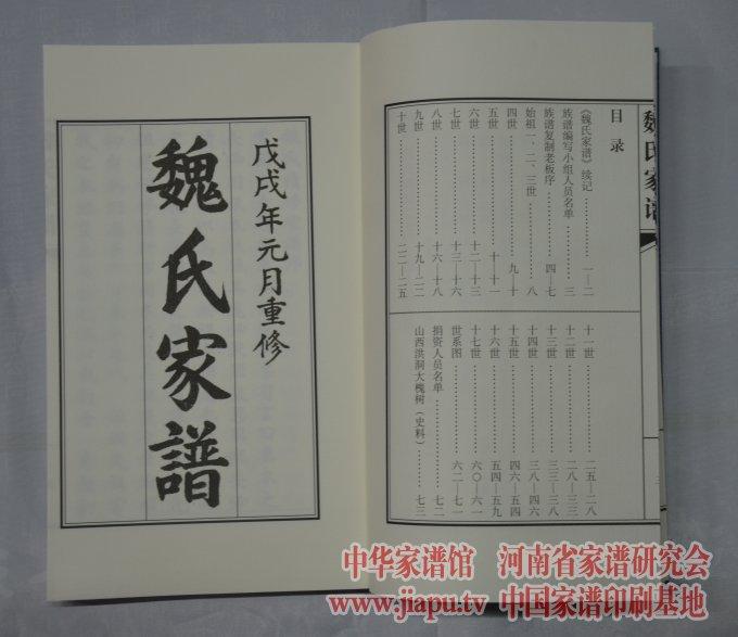 新乡县小冀镇魏氏家谱-中国家谱网