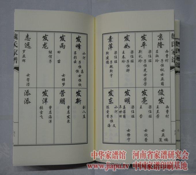 新乡县小冀镇人口_新乡县小冀镇总体规划