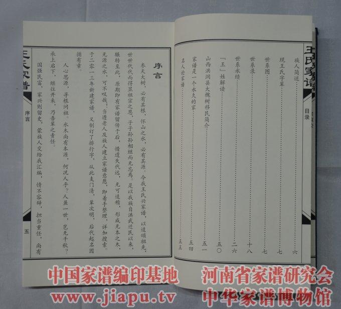 山东省成武县王氏家谱