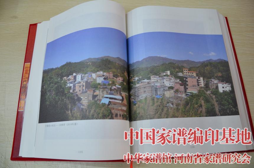 揭西县上砂镇庄氏家族居住地近照.jpg
