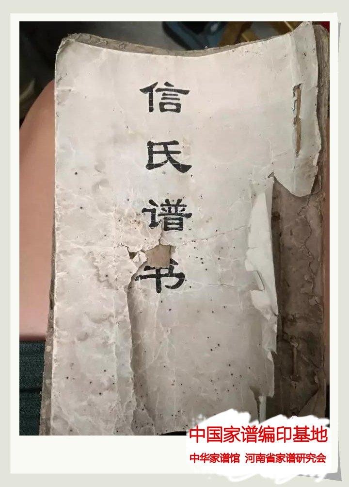 山东寿光《信氏族谱》.jpg